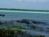 La laguna de Bacalar desde el pueblo