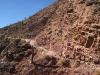 09-caravana-llamas-tilcara