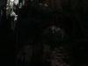 12 Ale en el gran cenote