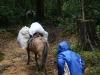 03. La carga a caballo