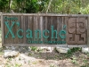 11. Entrada al cenote