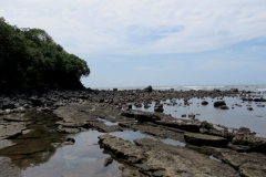 Playa Los Cóbanos