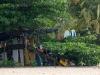 21. Renta de tablas en Playa Cocles