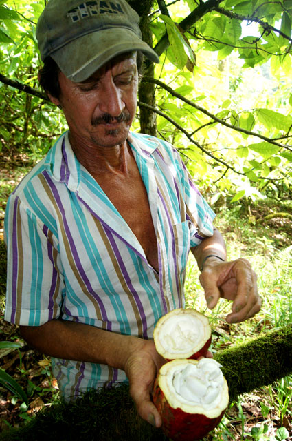10 Juan Luis y el cacao