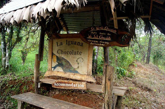12 La Iguana Chocolate