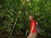 28 Explorando el bosque lluvioso