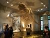 10.Museo.hombre.y.mar