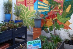 Mercados y huertos urbanos orgánicos