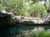 15 Ale saltando en el Cenote Jardin del Eden
