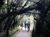 07. Caminando a la laguna Botos