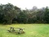 16. Area de picnic