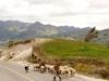 05.Pastor-camino-a-Quilotoa