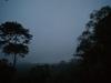 10.Amanecer-en-la-selva