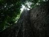 06-Parque-N-Madidi