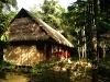 15-Madidi-Jungle-Lodge