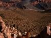 10-caravana-llamas-tilcara