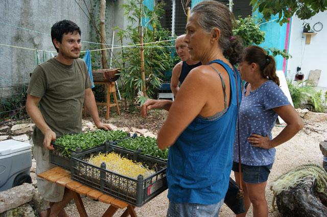 20. Mercado Organico