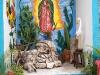 17. El Jardin de Frida