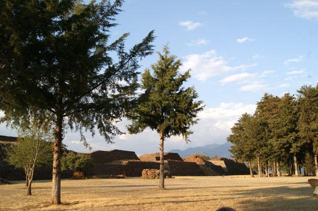 Zona arbolada junto a las Yácatas