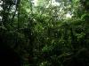 09-Parque-Nacional-Carrasco