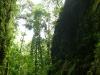 10-Cuevas-del-repechon