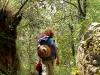 Adios el Bosque Village