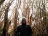 Eli en Bosque de Arrayanes